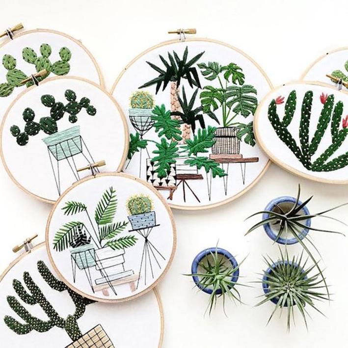 cactus sarah K Benning