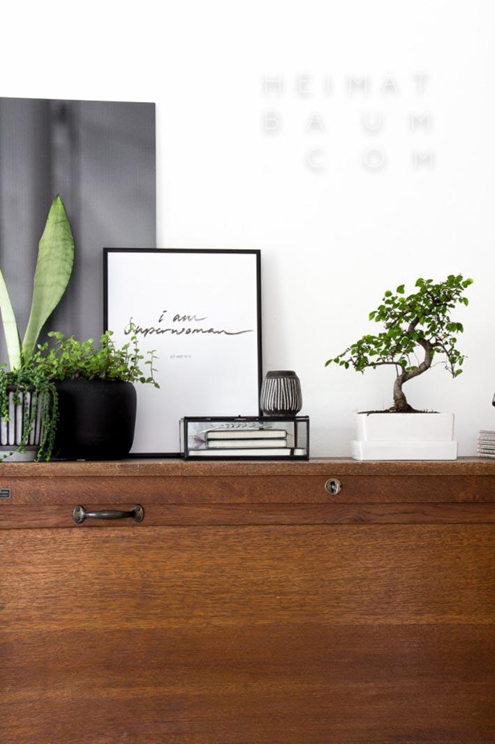 heimatbaum_plants_on_furniture